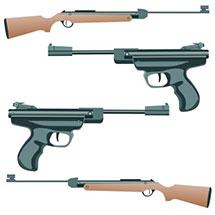 Guns & Safes